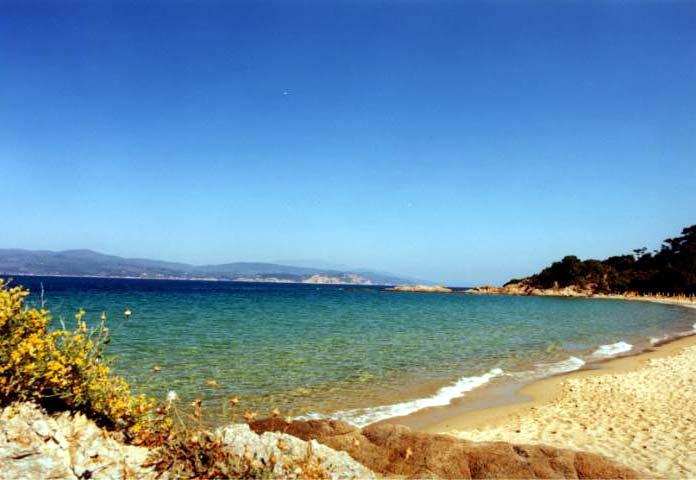 BANANA BEACH -