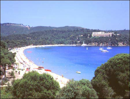 Koukounaries is the most famous beach of Skiathos and reputed to be the best in the Aegean if not the whole Mediterranean. It has fine golden sand leading up to the shade of the Koukounaries pine trees (umbrella pines). SKIATHOS PHOTO GALLERY - KOUKOUNARIES BEACH